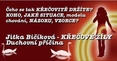 Jitka Bičíková : KŘEČOVÉ ŽÍLY - psychosomatická příčina