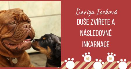 Dariya Iczková: Duše zvířete a následovné inkarnace