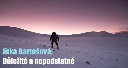 Jitka Bartošová: Důležité a nepodstatné