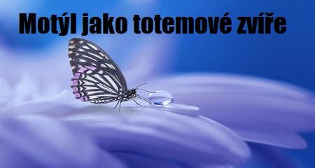 Jitka Bartošová: Motýl jako totemové zvíře