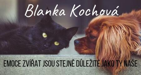 Blanka Kochová: Emoce zvířat jsou stejně důležité jako ty naše