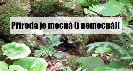 Hana Jánská: Příroda je mocná (i nemocná)!