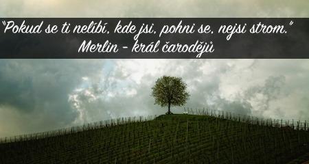 MERLIN král čarodějů: Pokud se ti nelíbí, kde jsi, pohni se, nejsi strom