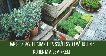 Jak se zbavit parazitů a snížit svou váhu jen s kořením a semínkem