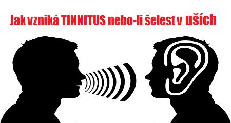 Ing. Peter Studeník: Jak vzniká TINNITUS nebo-li šelest v uších