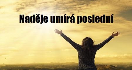 """Roman """"New"""" Zahrádka: Naděje umírá poslední"""
